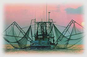 Commercial Shrimp Boat Image - using Brunson Net's Marine Netting