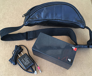 BATTERY/ CHARGER & TRAVEL FANNY PAK